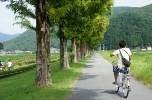 自然がたくさんあってさわやかにサイクリングできました